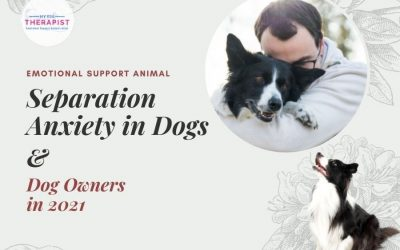 Separation Anxiety in Dogs and Dog Owners in 2021